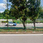 Maxi Cab Singapore - Minivan and Minibus