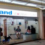 Island Veterinary Clinic