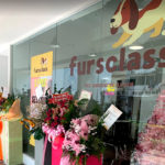Fursclass Pet Grooming Salon