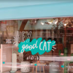 Hey Good Cat