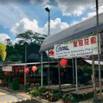Corona Florist & Nursery